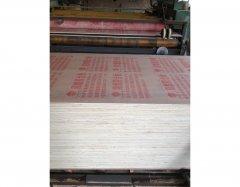 阻燃胶合板_AMT-阻燃胶合板 (3)